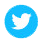 twittericon-web